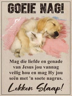 Afrikaanse Quotes, Goeie Nag, Sleep Tight, Good Night, Van, Christian Messages, Lilac, Friendship, Cottage