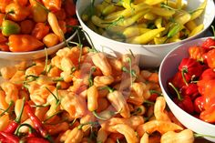 Final picking of our gorgeous homegrown Chilli Peppers. Peach Bhut Jolokia/Lemon Drop/Scotch Bonnet Red/Scotch Bonnet Orange & Ring of Fire -