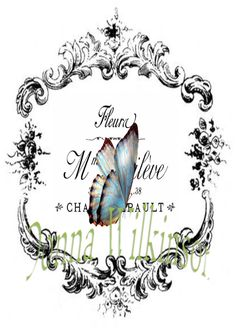 Frame blue butterfly typography