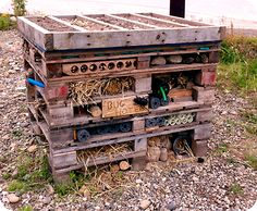 Bug hotel! Bug Hotel, Insect Hotel, Garden Projects, Garden Ideas, Child Hood, Allotment, Native Plants, Permaculture, Hydroponics
