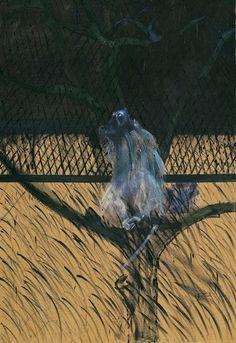 "nickroericht: ""Francis Bacon | Study of a Baboon | 1953 """