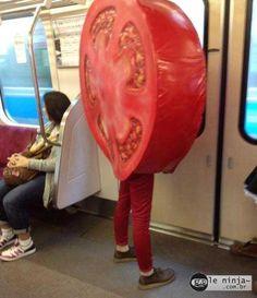 Tomatoes, tomatoes everywhere!