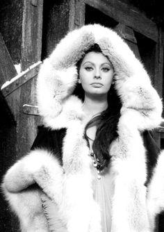 Glamour much?  Gorgeous Sophia Loren.
