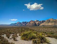Nevada desert vibes  #redrockcanyon #mobilephotography #naturephotography #shotonpixel2xl #shotonmoment #deserttravel #instatravel #travelshots Business Travel, Nevada, River, Outdoor, Outdoors, Outdoor Living, Garden, Rivers