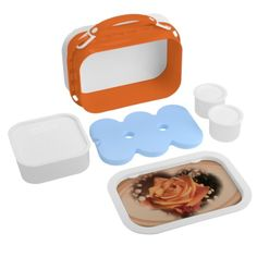 Rose Apricot Lunchbox