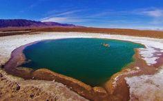 LAGUNAS ESCONDIDAS, UM OÁSIS EM MEIO AO DESERTO #historiasdadi #viagem #chile #atacama
