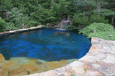 Swimming Pools, Pond