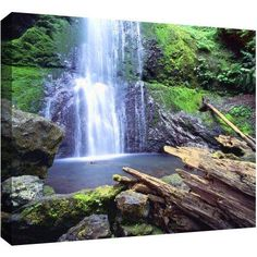 Dean Uhlinger Primal Falls Gallery-Wrapped Canvas, Size: 24 x 32, Green