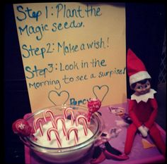 easy elf on the shelf idea. planting candy canes plus 134 more easy elf on the shelf ideas