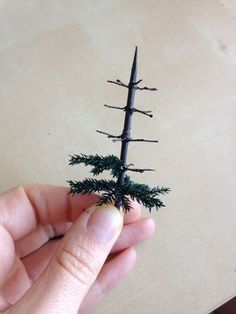 Good Architecture Of Tiny Distinction: Making A Victorian Style Christmas Tree  Pinned With Pinvolve   Pinvolve