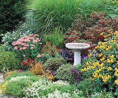Garden plan for around tree, front yard. Sub pot fountain for birdbath.