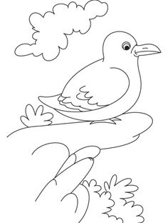 A smart gull bird coloring page | Download Free A smart gull bird coloring page for kids | Best Coloring Pages