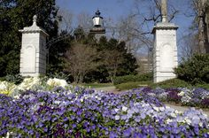 The front gate of my alma mater - Emory University