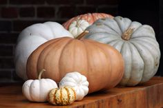 Heirloom pumpkins.