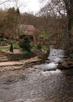 The River Rye - Rievaulx, North Yorkshire, England