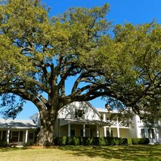 The (former) Texas White House, Johnson City