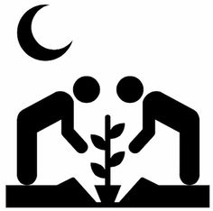 Guerrilla Gardening'. Collaboration by Edward Boatman and Yohei Nakajima. United States, 2011.