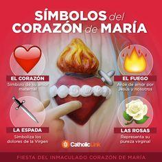 Biblioteca de Catholic-Link - Infografía: Símbolos del Inmaculado Corazón de...