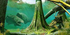Os Tetrápodes: uma vida terrestre