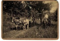 Mule-drawn phaeton carrying four young children, with woman on horseback. 1895, Courtesy: © Minnesota Historical Society, St. Paul, MN (USA).