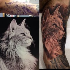 realistic cat tattoo portrait by billymaurice