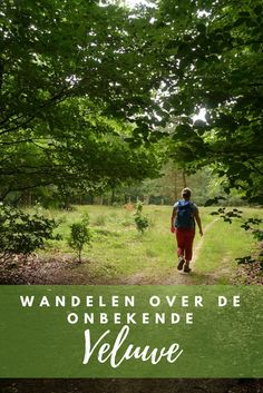 Wandelen over ongebaande paden op de Veluwe Hiking Tours, Hiking Trails, Travel Pictures, Travel Photos, Weekender, Places To Travel, Places To See, Float Your Boat, Walkabout