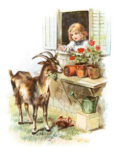 Vintage high resolution digital antique color mischievous goat illustration image from antique artwork for fabric transfers, making prints,
