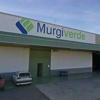 Murgiverde s.c.a. 2º: MURGIVERDE LIDERA EL SECTOR DE HORTALIZAS ECOLOGIC...
