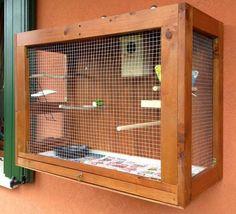 Why Build a Bird Aviary? Big Bird Cage, Parakeet Cage, Homemade Bird Houses, Bird Aviary, Parrot Toys, Bird Boxes, Pet Cage, Pet Furniture, Exotic Birds