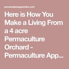 Here is How You Make a Living From a 4 acre Permaculture Orchard - Permaculture Apprentice