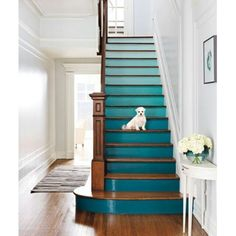 Ombre Staircase-wouldn't go to white...start with dark and add white to paint each step...only need one can of paint and white paint...hhmmm