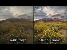 How to Do Intelligent Raw Photo Landscape Editing in Lightroom