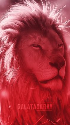 Lion, Wallpaper, Animals, Beautiful, Weapon, Leo, Animales, Animaux, Wallpapers