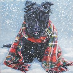 Scottish Terrier scottie art print CANVAS print of by TheDogLover