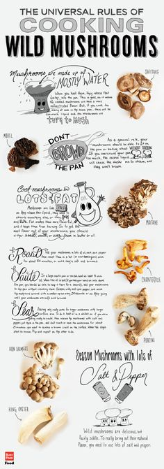This huge collection of the Rules of Cooking Wild Mushrooms and Recipes helps to find delicious ways to eat wild food foraging mushrooms in meals. Edible Mushrooms, How To Cook Mushrooms, Stuffed Mushrooms, Growing Mushrooms, Cooking Tips, Cooking Recipes, Cooking Videos, Cooking Classes, Freezer Recipes