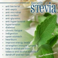 I didn't know this... the Benefits of Stevia!!!! This is one of the ingredients found in Plexus Slim.