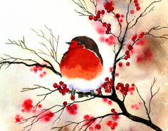 watercolor Illustration of a red-breasted bird - Rachel McNaughton