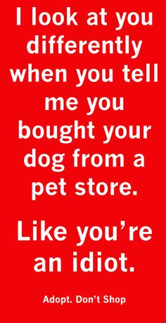 ADOPT, don't shop or buy from ANY breeder! Educate yourself and stop the madness! http://www.humanesociety.org/issues/puppy_mills/