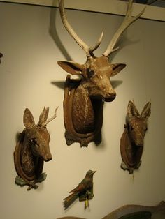 Antique Folk Art carved wood deer heads. Probably European.