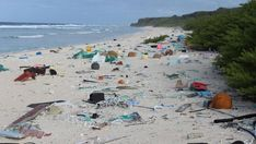 Millions Of Pieces Of Plastic Are Piling Up On An Otherwise Pristine Pacific Island South Pacific, Pacific Ocean, Thich Nhat Hanh, Plastic Pollution, Strasbourg, Tasmania, Dolores Park, Recycling, Environment