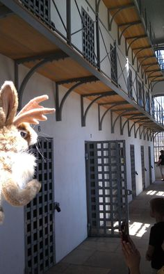 Jack is looking down a cell block of the Wyoming Territorial Prison!