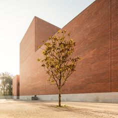 Alvaro Siza_Aresta Arquitectura / Auditorio Publico / Llinars del Vallés (ES)