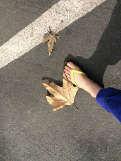 My foot and the giant leaves of big sur California