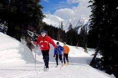 Kootenay Rockies -cross country skiing