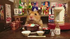 Cute ball of fur by day, suave bartender by night—such is the life of Ginji, an adorable hamster who lives with his owner Kosuke Sato (@Kawanabesatou on Twitter) and other hamster friends in Japan. Sato, who works as a tombstone salesman in Chiba Prefecture's Yachiyo, often amuses himself by photographing his little pets hard at …