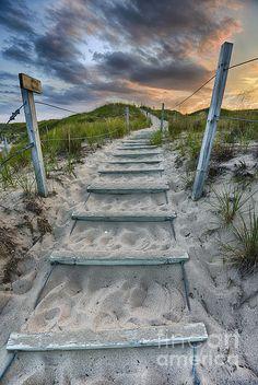 Follow the Path / Sleeping Bear Dunes National Lakeshore  / Michigan