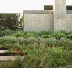 Allied Works Architecture - Sun Valley Residence - landscape by Lutsko Associates, Idaho US