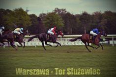 Warsaw - horse racing - Stegny