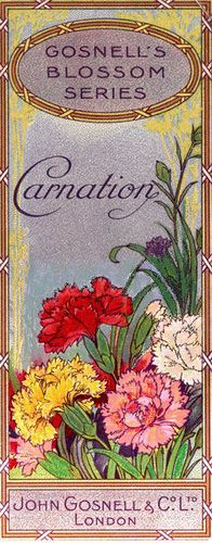 vintage seed packet art  ~ Carnations Gosnell's Blossom Series