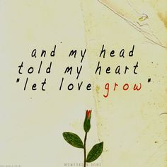 And my head told me heart, let love grow. -Mumford & Sons